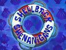 Shellback Shenanigans