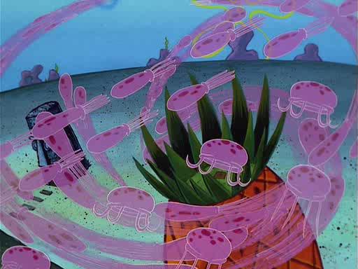 File:Jellyfish Jam Gallery (51).jpg