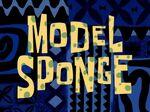 Model Sponge