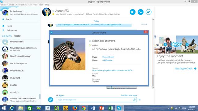 File:SBCA Skype.png