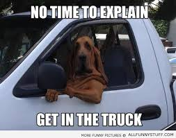 File:Bloodhound meme.jpg