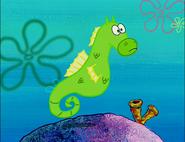My Pretty Seahorse 07