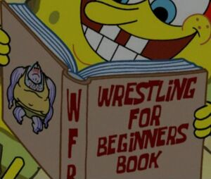 Wresting book for beginers