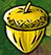 Sandy Chop Chop - Golden acorn