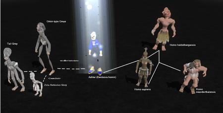 Human evolution1