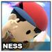 Ness Icon SSBWU