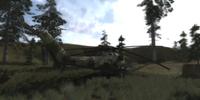 Operation Fairway