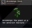 Avesmingo Seed
