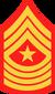 SgtMaj