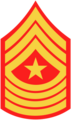 SgtMaj.png