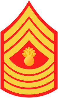 File:MGySgt.png