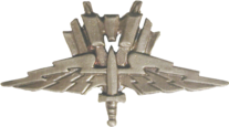 Mobile Infantry Pin (films)