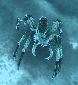 Glikar'ma ice spider