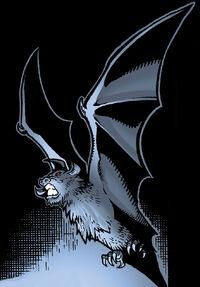 Ruusan Bat