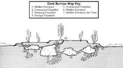Gerb burrow