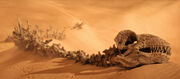 Krayt bones-Battlefront