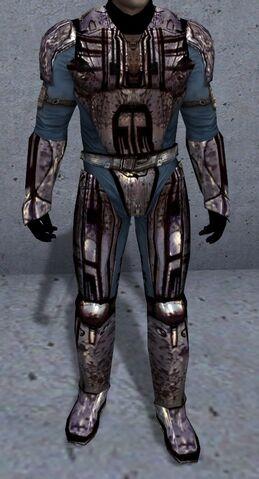 File:Felenar Armor.jpg