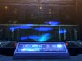 Project Nebula.png