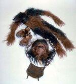 Chewie suit btm