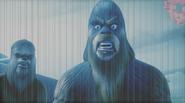 Wookie (HoloNet News)