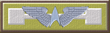 Starfighter Corps Academy Top 15% of Class.png