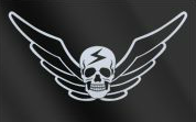 File:Shadaloo flag.png