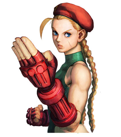 File:1226cammy.jpg