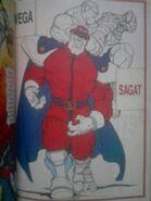 Sagat1