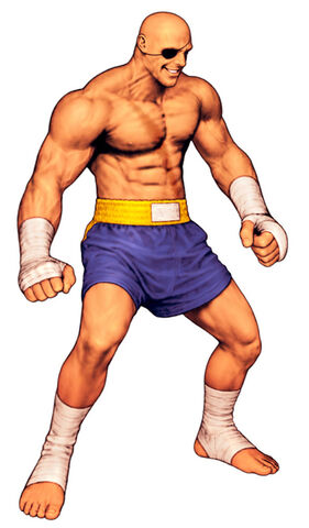 File:Sagat-full-cvs2.jpg