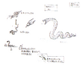 Str2 snake concept