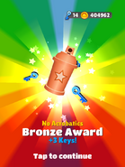 AwardBronze-NoAcrobatics
