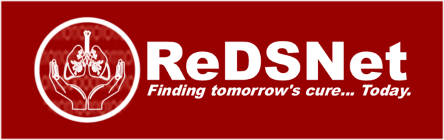 File:ReDSNet 1.png
