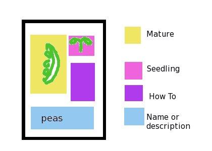 File:Seedpacket.jpg