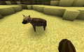 Hyena2.png