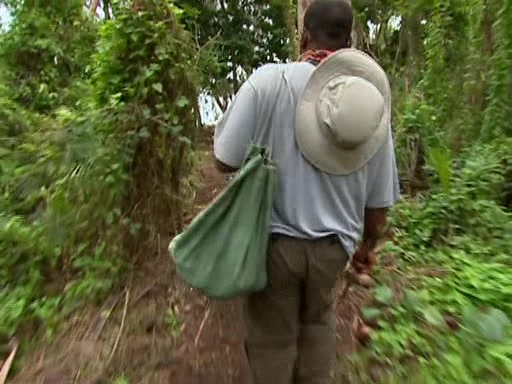 File:Survivor.Vanuatu.s09e03.Double.Tribal,.Double.Trouble.DVDrip 064.jpg