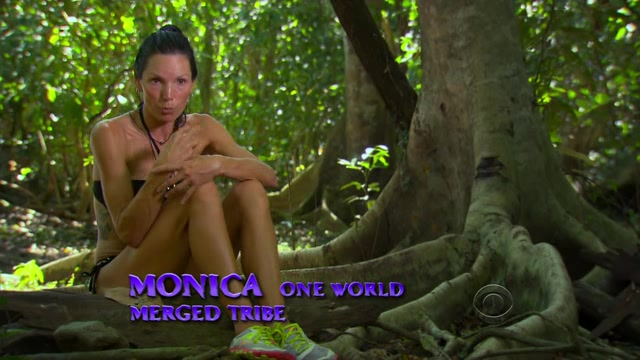 File:Survivor.S27E08.HDTV.XviD-AFG 287.jpg