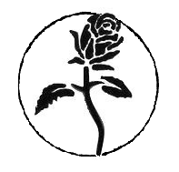 Black rose (anarchist symbol)
