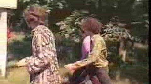 Pink Floyd:The Scarecrow