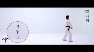 9th Taekwondo New Poomsae (나래) Narae for Age 50 60 Korean version