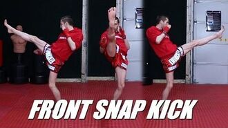 Taekwondo Front Snap Kick Tutorial for MMA & Kickboxing 60fps