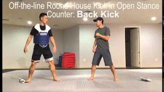 Olympic Taekwondo Sparring Tutorial Episode 1 Part 1 YUNSHOW