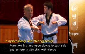 Pyongwon DoubleElbowStrike