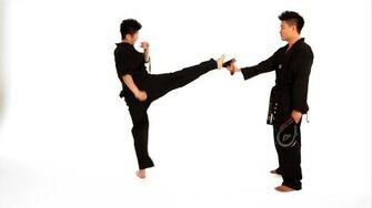 How to Do a Roundhouse Kick Taekwondo Training