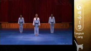 Grand Master Kyu Hyung Lee - WTF Taegeuk Il Jang-0