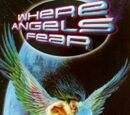 Where Angels Fear (novel)