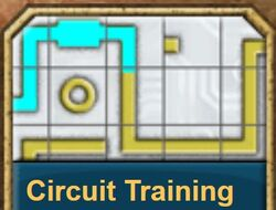 Circuit Training2