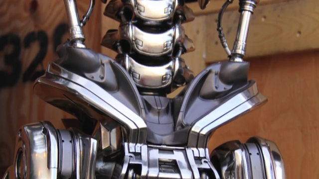 File:Tg-t800-photo-pelvis.png