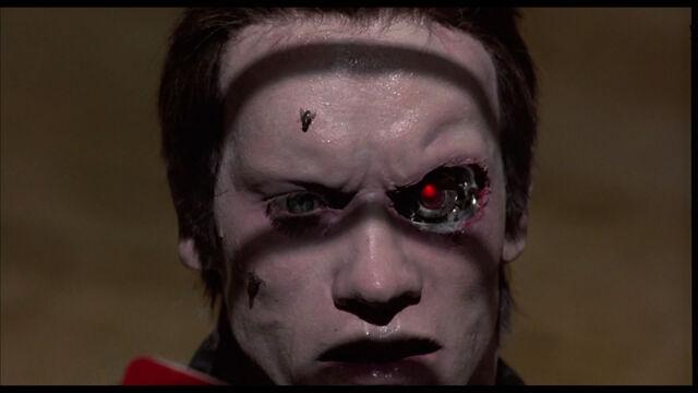File:The-Terminator-terminator-24509158-1920-1080.jpg