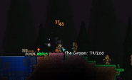 The Groom terraria