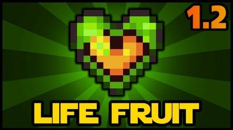 Life Fruit Terraria 1 2 Health Increase Terraria HERO